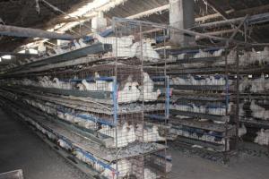 固体废料处理公司